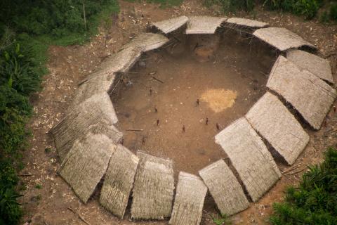 Невероятные кадры амазонског…