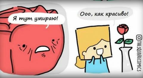 Жизнь вещей: комиксы о жизни…