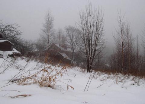 Вчера было солнце, сегодня туман... А так всё хорошо начиналось! Декабрь 12 число