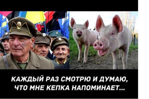 Донецк – воплощение евро-укр…
