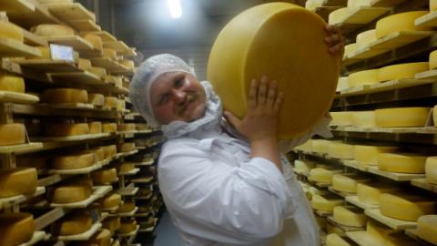 Российские сыровары просят у Запада еще 10 лет санкций
