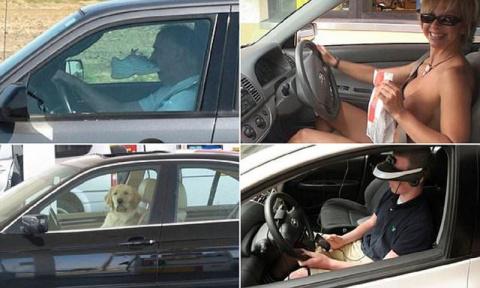 Самые странные вещи, которые можно заметить на шоссе (18 фото)