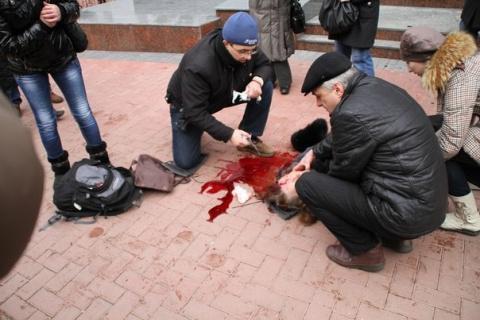 """""""Правый Сектор"""" хладнокровно расстрелял 12-летнего мальчика в Славянске"""