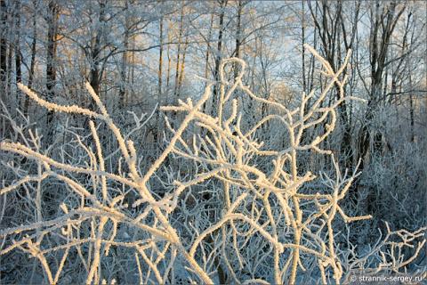 Где царит настоящая зима