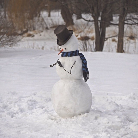 Снеговик начала 21 века.