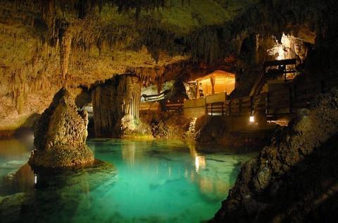 Под Сфинксом нашли дворцы с подземными бассейнами