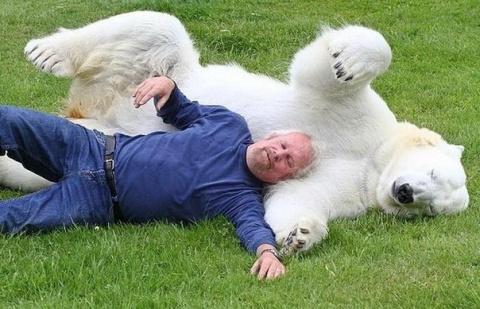 Дружба с белым медведем