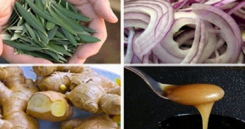 10 лучших природных антибиот…
