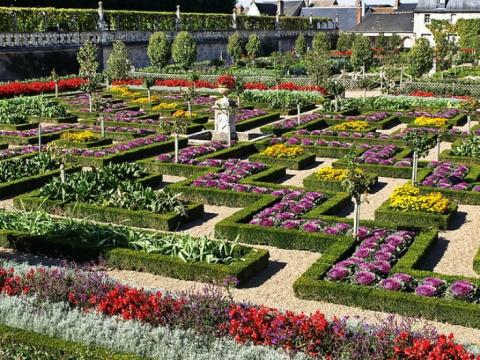 Кухонные сады замка Вилландри – самый красивый огород в мире