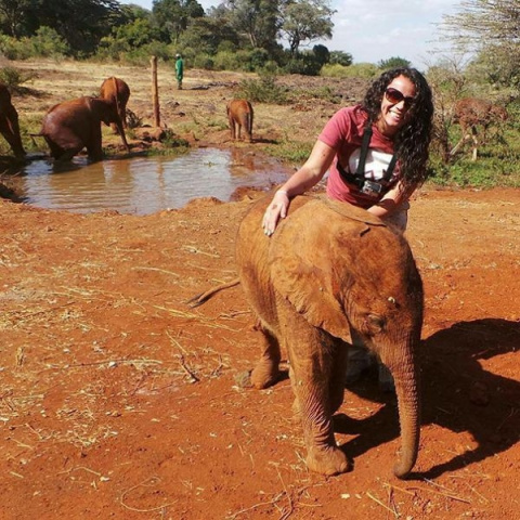 Страус, который считает себя слоном