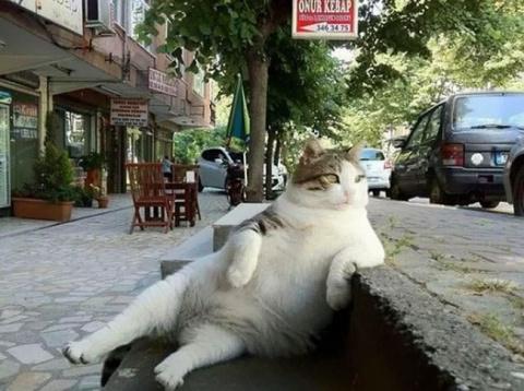 В Стамбуле установили скульп…