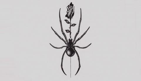 Бетонная паутина Новосибирска. Экзотические животные нашего города