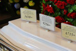 Пенсионер попросил Путина купить ему гроб