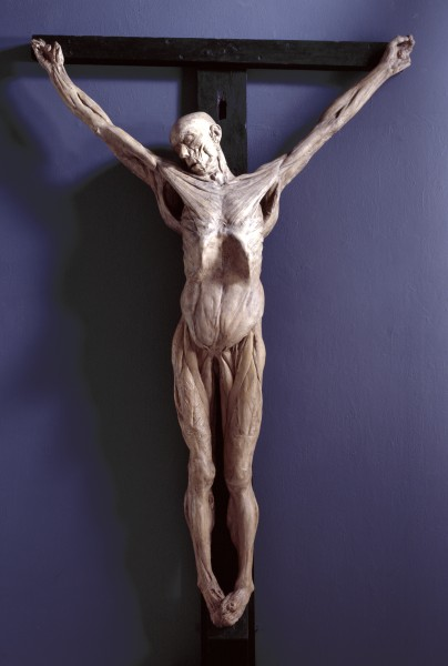 Как нужно анатомически правильно изображать распятие Христа?