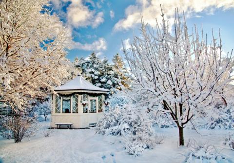 Надо ли утаптывать снег в плодовом саду?