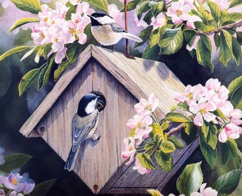 Очарование природы, художница SUSAN BOURDET