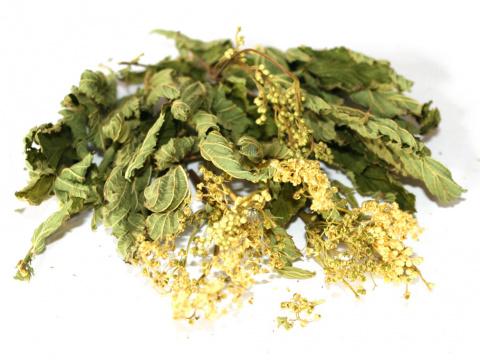 Лекарственные травы вяжущего…