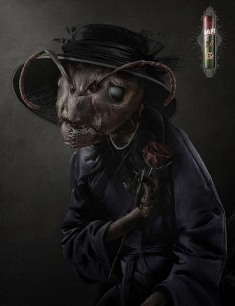 Вдова таракана