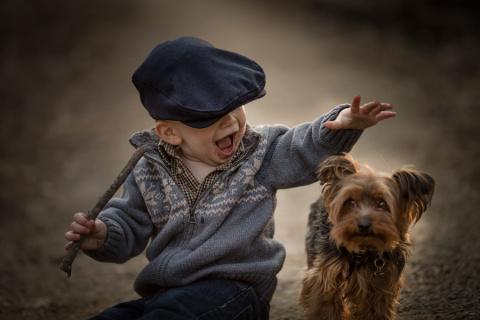 Невинные моменты чистой радости