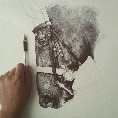 Рисунок ручкой...