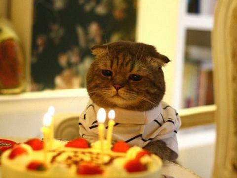 День рожденья – грустный праздник…