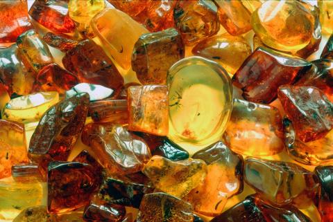В Калининградской области хотят производить в 10 раз больше изделий из янтаря