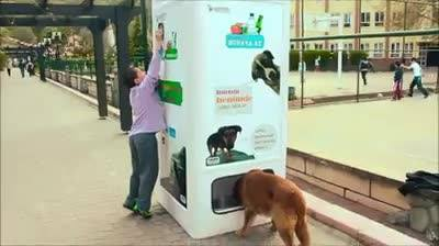 Гениальный аппарат кормит бродячих собак в обмен на пластиковые бутылки