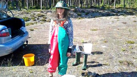 Лесные братья. Как украинцы по безвизу ягоды в Швеции собирают