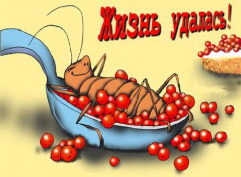 Средство от тараканов
