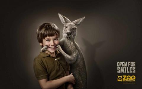 Зоопарк в Словакии заставит вас улыбнуться