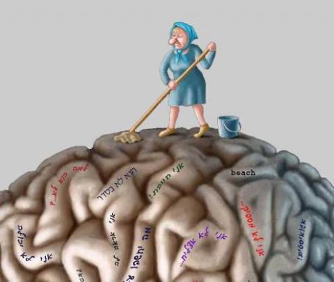 Ментальный клининг или как н…