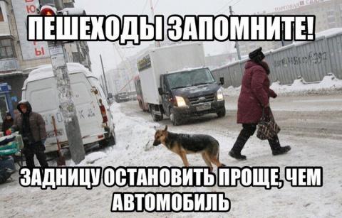 Автоприколы =)