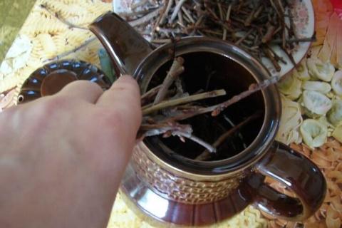 Такие полезные веточки! Завариваем чай из собственного сада