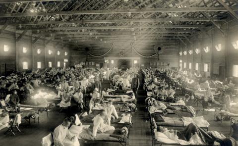 Смертельные пандемии, которы…