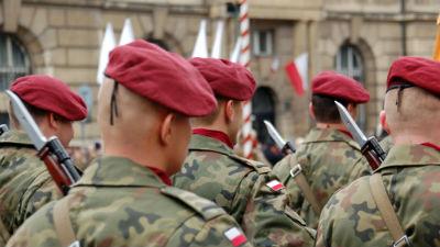 Польша готова поставлять Укр…
