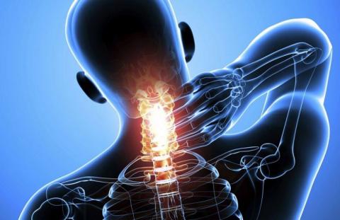 Йога для спины и позвоночника