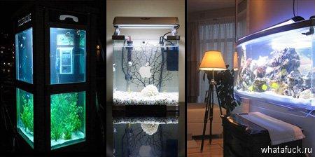 15 необычных и креативных аквариумов