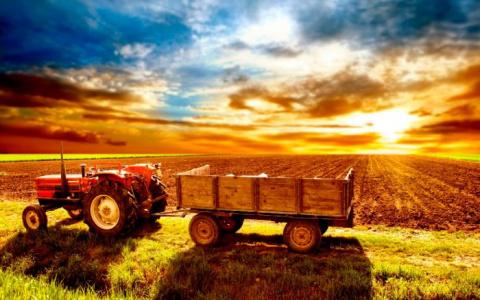 Фермеры-французы в восторге …