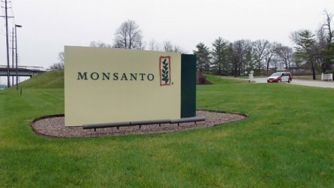 Мексика отозвала разрешение Monsanto на ГМ-сою