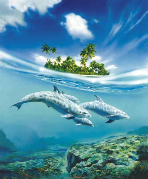 Учёные говорят, что дельфины самые умные существа. Тогда почему, они не построили цивилизацию?