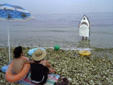 Забавные пляжные фото)) Люди…