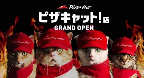 В Японии Pizza Hut переименовали в Pizza Cat