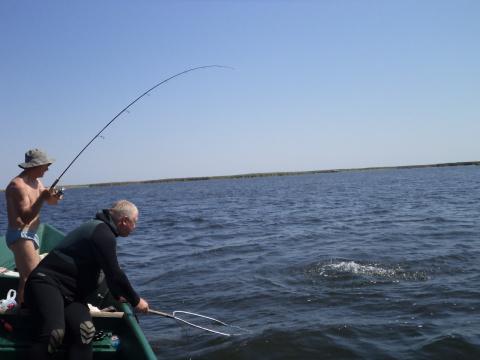 Кажется - что то есть! Рыбалка в раскатах 08. 2012г