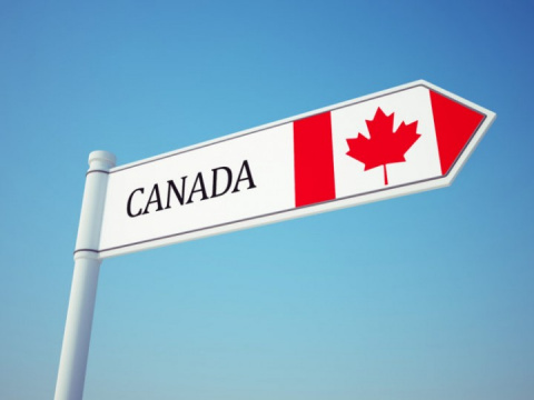 Американские студенты бегут от Трампа в Канаду