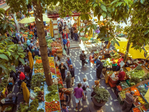 Почему Мадейру называют лучшим островом в Европе