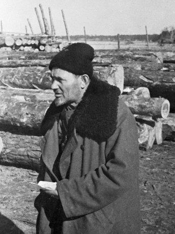 Дед, которого боялся Гитлер. Как Сидор Ковпак создал партизанскую армию