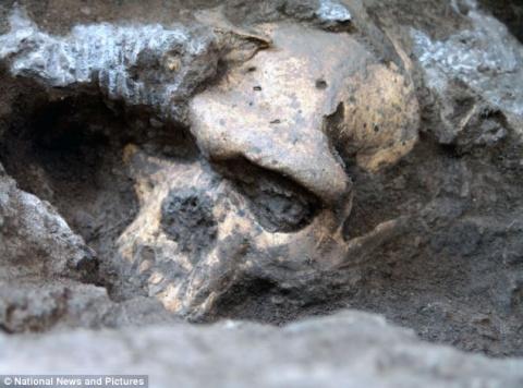 Найден древний череп, опрове…