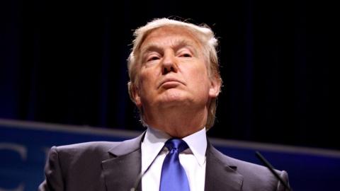 В США подали в суд на Трампа…