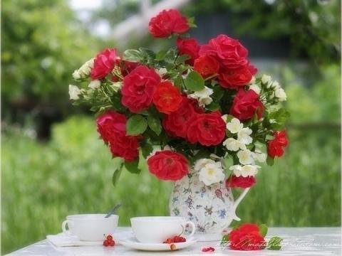 roza tupikova(Кацина) (Кацина)
