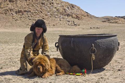 Тибетский мастиф : Снежные л…
